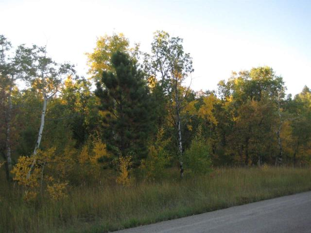 Lot 30 Sunflower Circle, Sturgis, SD 57785 (MLS #61411) :: VIP Properties