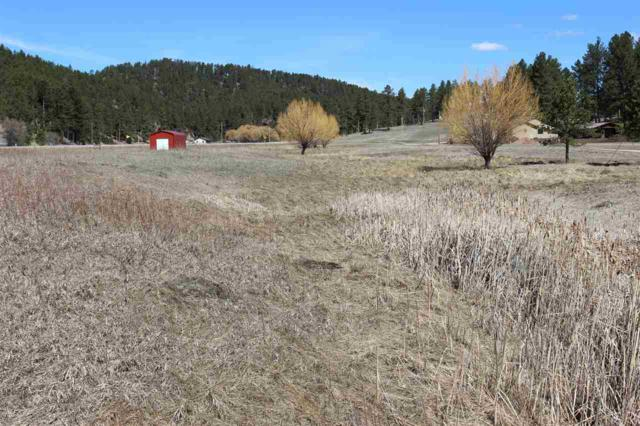 Lot 7 Golden Willow Parkway, Custer, SD 57730 (MLS #61424) :: Christians Team Real Estate, Inc.