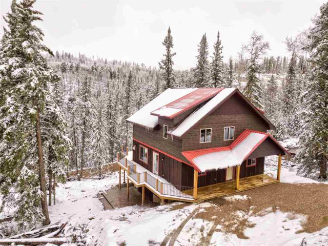 21185 Lost Camp Trail, Lead, SD 57754 (MLS #61428) :: Christians Team Real Estate, Inc.