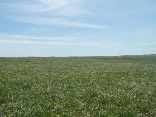 RR Twilight Rd, Newell, SD 57760 (MLS #61489) :: Dupont Real Estate Inc.