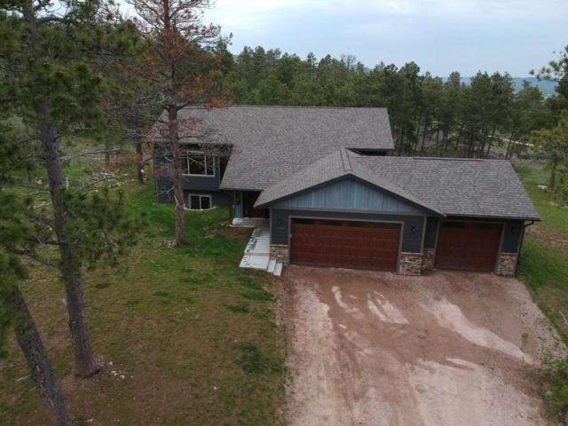 11432 Big Horn Loop, Piedmont, SD 57769 (MLS #61501) :: Christians Team Real Estate, Inc.