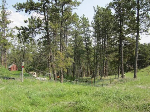 12622 Us Hwy. 18 West, Hot Springs, SD 57747 (MLS #61558) :: Christians Team Real Estate, Inc.