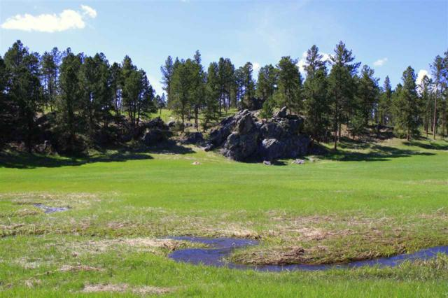 TBD Big Valley Trail Road, Custer, SD 57730 (MLS #61582) :: Christians Team Real Estate, Inc.