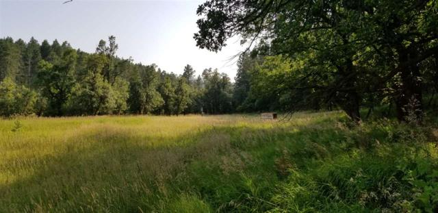 Vanocker Canyon Road, Stirgis, SD 57785 (MLS #61595) :: Christians Team Real Estate, Inc.