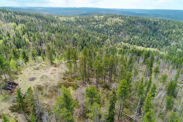 Lot 4 & 5 Lookout Trail, Lead, SD 57754 (MLS #61602) :: Christians Team Real Estate, Inc.