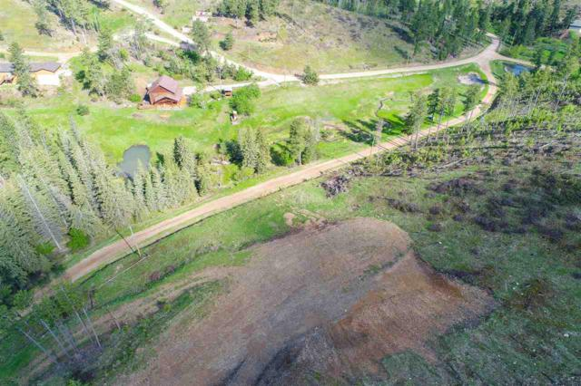 21164 Four Bit Pl, Deadwood, SD 57732 (MLS #61679) :: Dupont Real Estate Inc.