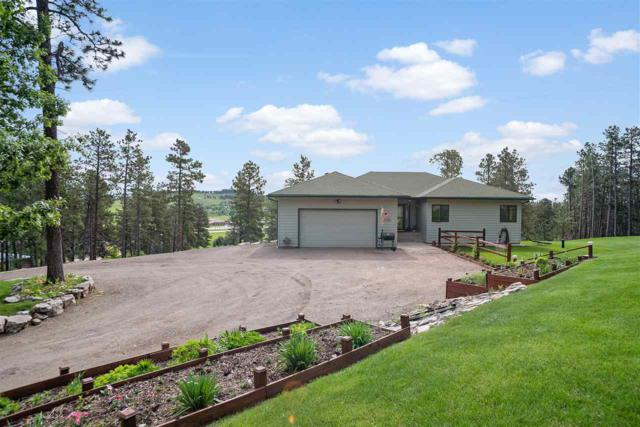 12395 Navajo Drive, Piedmont, SD 57769 (MLS #61708) :: Christians Team Real Estate, Inc.