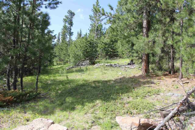TBD Mountain Lion Road, Lead, SD 57754 (MLS #61731) :: Christians Team Real Estate, Inc.