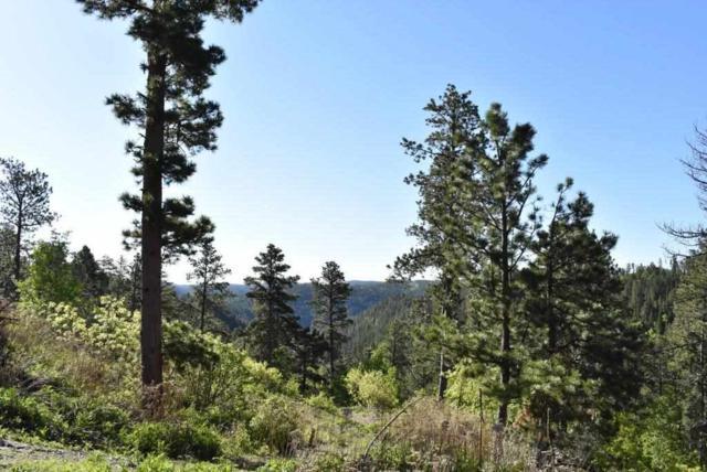 HIDDEN WEALTH Nevada Gulch Road, Lead, SD 57754 (MLS #61783) :: Christians Team Real Estate, Inc.