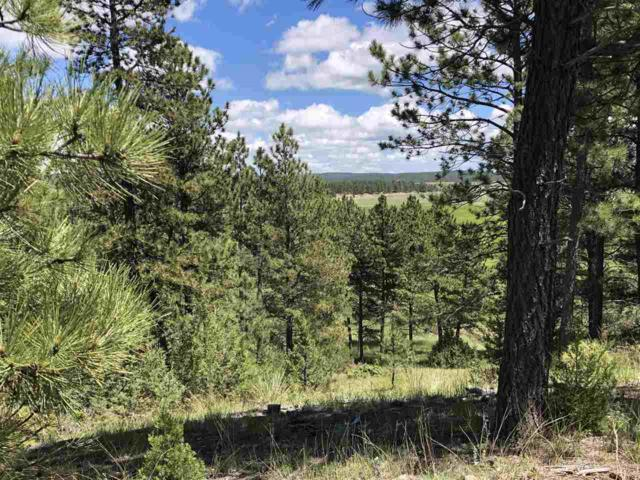 Vista Meadow 5 Elk Run Rd., Custer, SD 57730 (MLS #61796) :: Christians Team Real Estate, Inc.