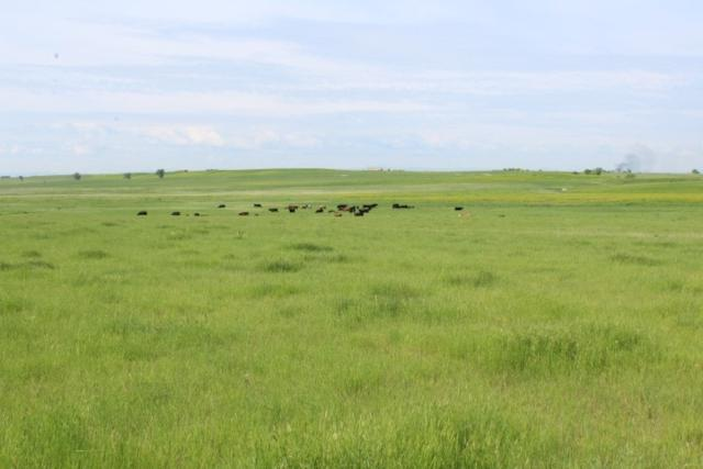 Hope Road, Newell, SD 57785 (MLS #61804) :: Dupont Real Estate Inc.