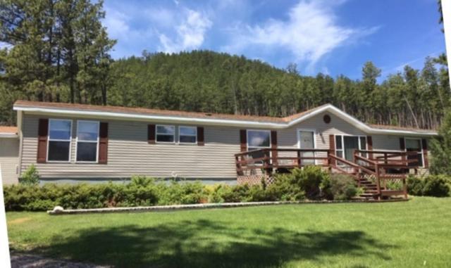 25909 Carroll Creek Rd, Custer, SD 57730 (MLS #61822) :: Christians Team Real Estate, Inc.