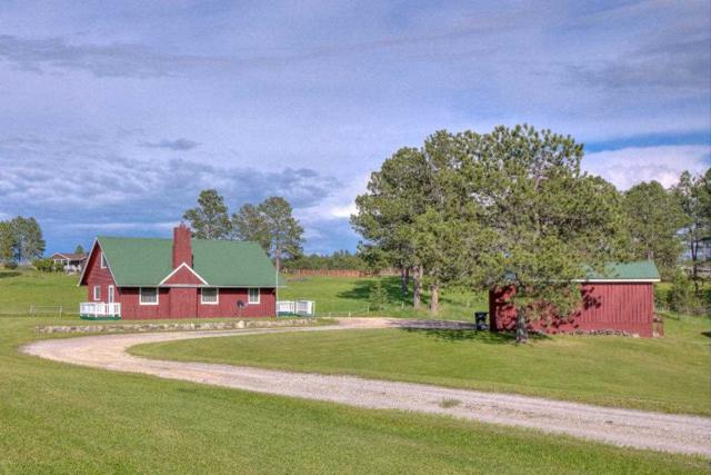 12027 W Hwy 16, Custer, SD 57730 (MLS #61832) :: Christians Team Real Estate, Inc.