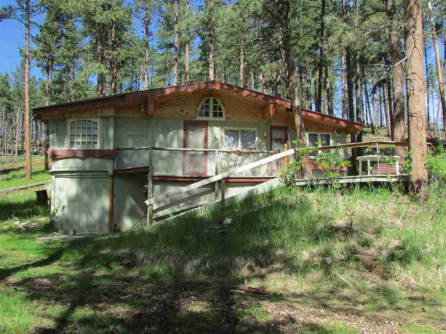 23225 385 Highway, Rapid City, SD 57702 (MLS #61877) :: Christians Team Real Estate, Inc.