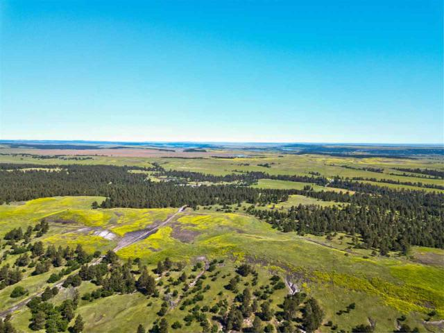 2917 Mona Road, Aladdin, WY 82710 (MLS #61918) :: Dupont Real Estate Inc.