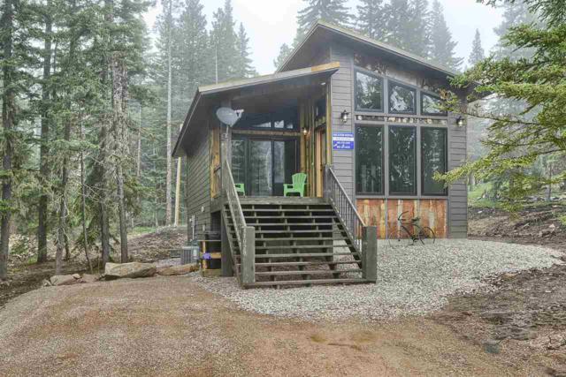 11028 Antelope Trail, Lead, SD 57754 (MLS #61962) :: Christians Team Real Estate, Inc.