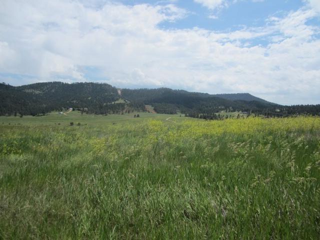 GC-112 Meadowlark, Hot Springs, SD 57747 (MLS #61985) :: Dupont Real Estate Inc.