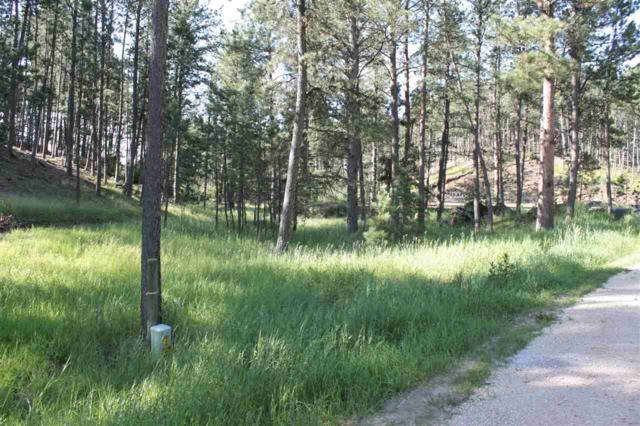 25325 Edyth Circle, Custer, SD 57730 (MLS #62022) :: Dupont Real Estate Inc.
