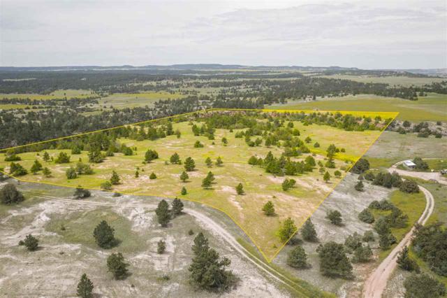 Lot 2 Lariat Road, Custer, SD 57730 (MLS #62026) :: Dupont Real Estate Inc.