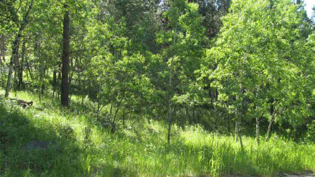 240 Brenner Pass, Hill City, SD 57745 (MLS #62028) :: VIP Properties