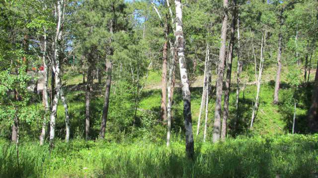 TBD Alpine Drive, Hill City, SD 57745 (MLS #62029) :: Christians Team Real Estate, Inc.