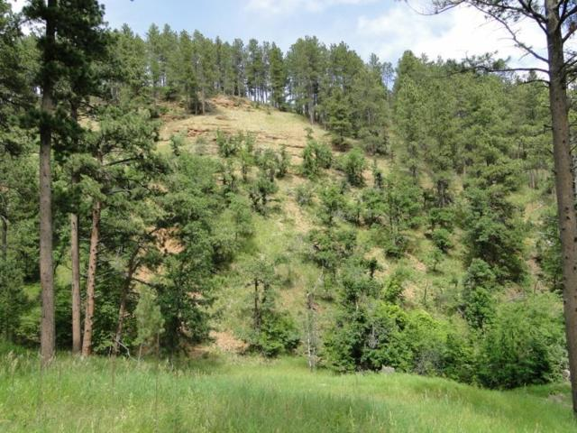 TBD Burnham Street, Deadwood, SD 57732 (MLS #62032) :: Christians Team Real Estate, Inc.