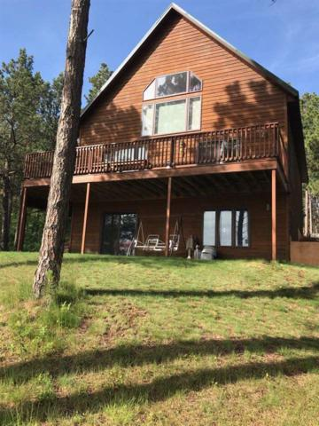 2020 Coneflower Court, Spearfish, SD 57783 (MLS #62035) :: Christians Team Real Estate, Inc.