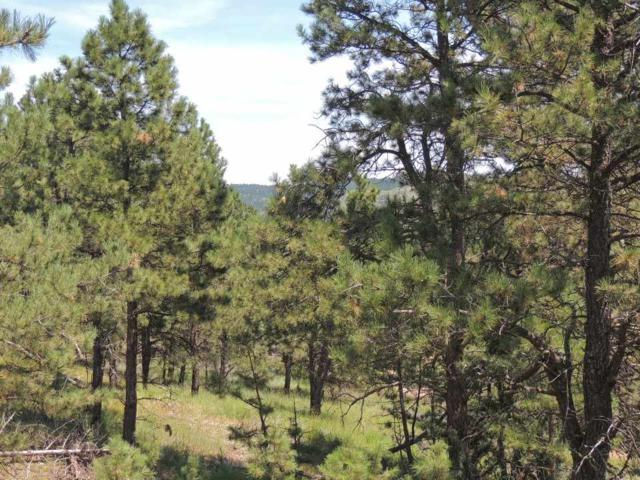 Lot 2 Chokecherry Ridge Rd, Hermosa, SD 57744 (MLS #62148) :: Christians Team Real Estate, Inc.
