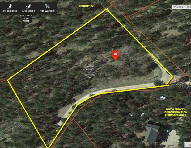 TBD Whale Road, Deadwood, SD 57732 (MLS #62156) :: Christians Team Real Estate, Inc.