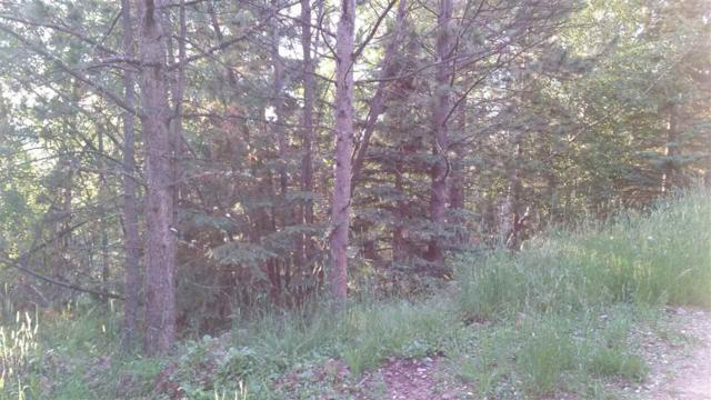 Lot 14 Snowcat, Lead, SD 57754 (MLS #62178) :: Christians Team Real Estate, Inc.