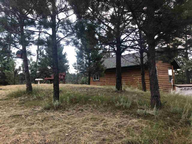 24231 S Rockerville Road, Keystone, SD 57751 (MLS #62202) :: Christians Team Real Estate, Inc.