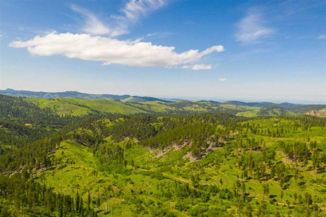 TBD Golden Ridge Road, Deadwood, SD 57732 (MLS #62223) :: Christians Team Real Estate, Inc.