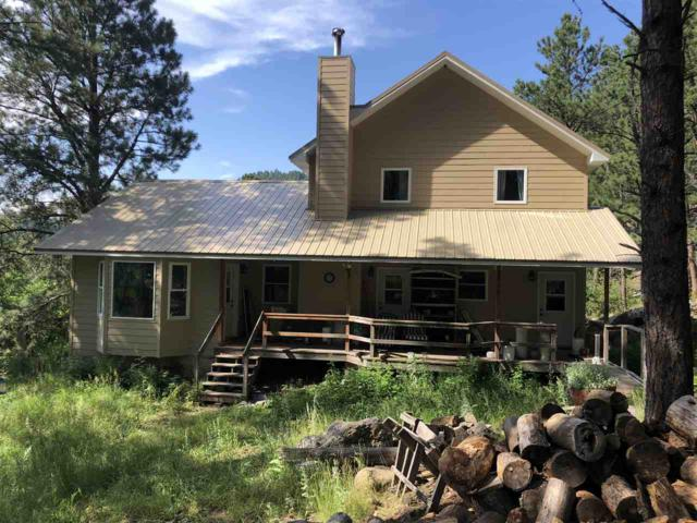 24664 Iron Mountain Road, Keystone, SD 57751 (MLS #62292) :: Christians Team Real Estate, Inc.