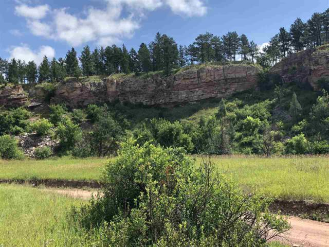 Tract 13 Battle Mountain, Hot Springs, SD 57747 (MLS #62296) :: Dupont Real Estate Inc.