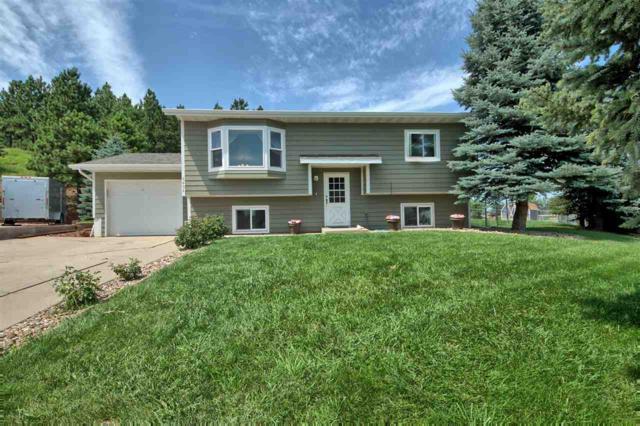 6406 Blue Spruce Court, Black Hawk, SD 57718 (MLS #62347) :: VIP Properties
