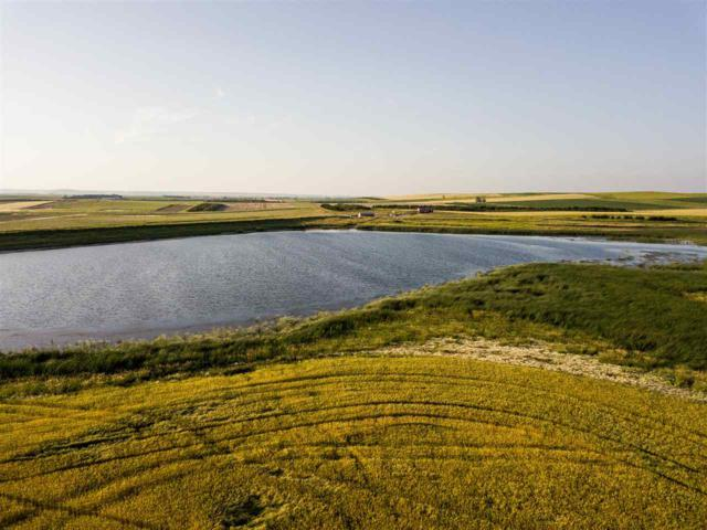 33551 280th Street, Gregory, SD 57533 (MLS #62390) :: Christians Team Real Estate, Inc.