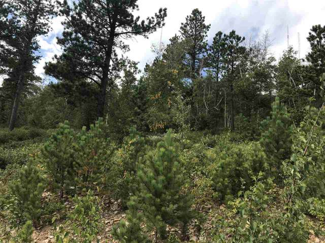 TBD Terry Summit Road, Lead, SD 57754 (MLS #62684) :: Dupont Real Estate Inc.