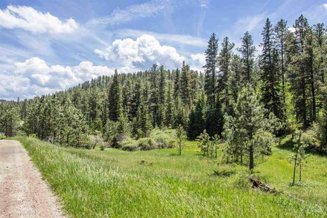 LOT 3B Mountain Stream Road, Lead, SD 57754 (MLS #62726) :: Dupont Real Estate Inc.