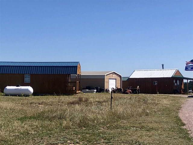 25474 Moonlight Drive, Custer County, SD 57735 (MLS #62736) :: Dupont Real Estate Inc.