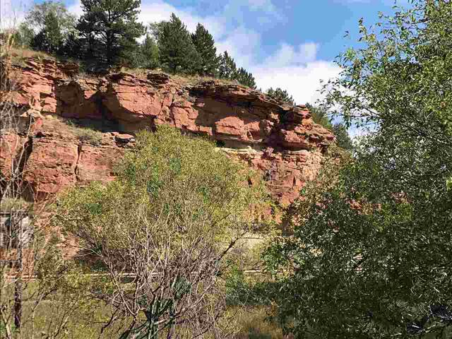 Fall River Road Highway, Hot Springs, SD 57747 (MLS #62899) :: Christians Team Real Estate, Inc.