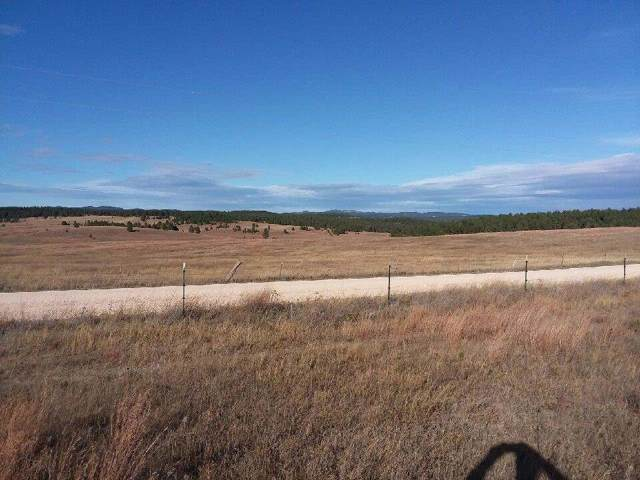 W. Argyle Rd., Custer, SD 57730 (MLS #62953) :: Christians Team Real Estate, Inc.