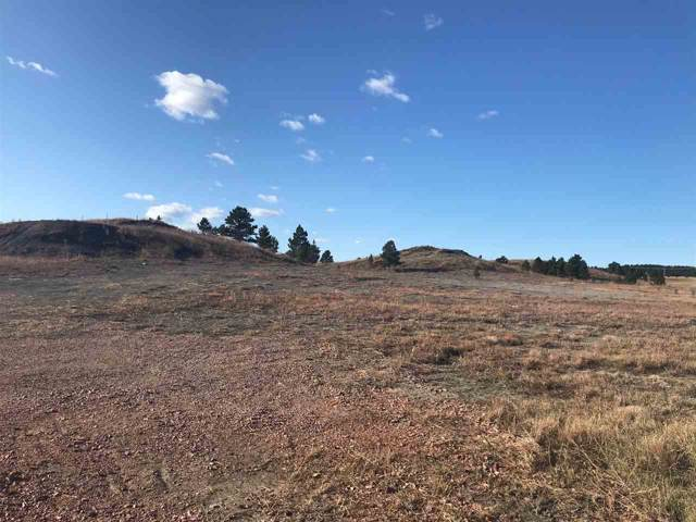 24547 Lindsey Loop, Hermosa, SD 57744 (MLS #62965) :: Christians Team Real Estate, Inc.