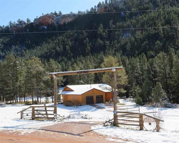 10215 Redbird Canyon Rd, Custer, SD 82701 (MLS #62971) :: Dupont Real Estate Inc.