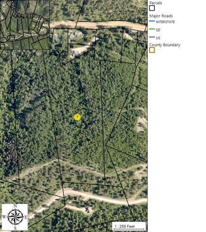 TBD Ida Grey Road, Lead, SD 57754 (MLS #62981) :: Dupont Real Estate Inc.