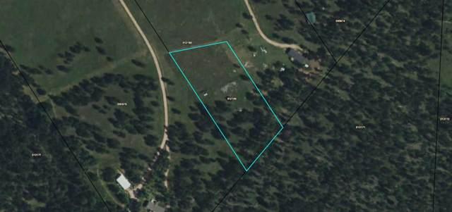 TBD Pass Creek Road, Custer, SD 57730 (MLS #63050) :: Dupont Real Estate Inc.