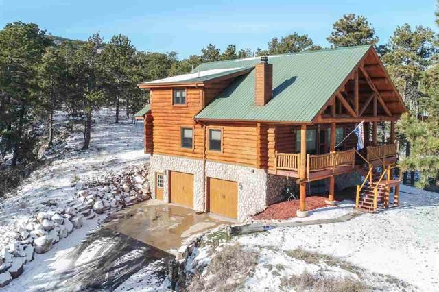11431 Bighorn Road, Piedmont, SD 57769 (MLS #63109) :: VIP Properties