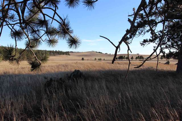 Tr. 13 Danby Park Trail, Custer, SD 57730 (MLS #63141) :: Dupont Real Estate Inc.