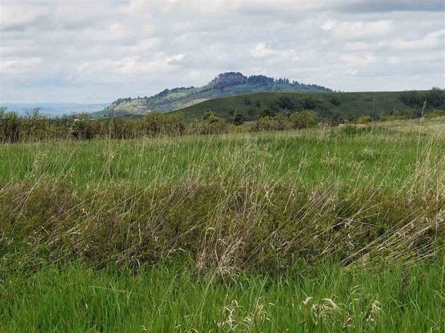 TBD Mcdermott Road, Spearfish, SD 57783 (MLS #63185) :: Christians Team Real Estate, Inc.