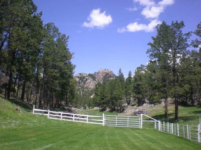 12486 Willow Creek Road, Custer, SD 57730 (MLS #63191) :: Christians Team Real Estate, Inc.