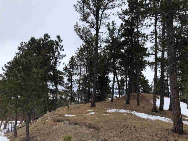TBD Oak Drive, Whitewood, SD 57793 (MLS #63222) :: Christians Team Real Estate, Inc.